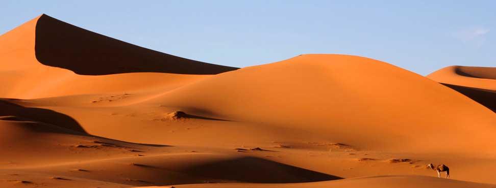 http://www.desertmarocain.fr/images/mergouza.jpg